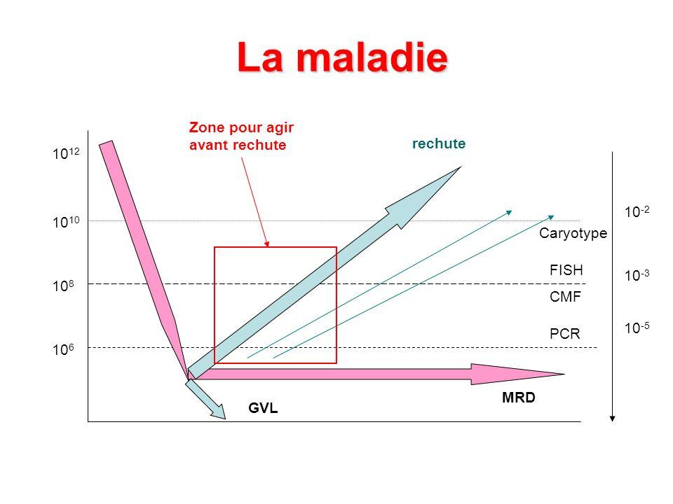 La maladie 10 12 10 10 8 10 6 Caryotype FISH CMF PCR 10 -2 10 -3 10 -5 Zone pour agir avant rechute GVL MRD rechute