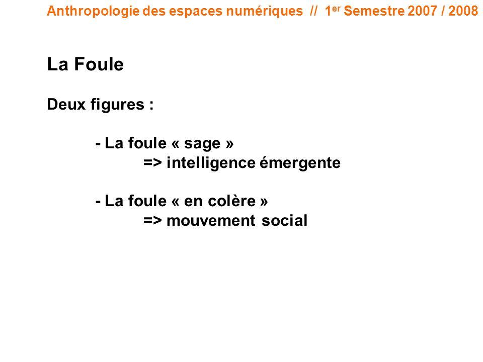 Anthropologie des espaces numériques // 1 er Semestre 2007 / 2008 La Foule Deux figures : - La foule « sage » => intelligence émergente - La foule « en colère » => mouvement social