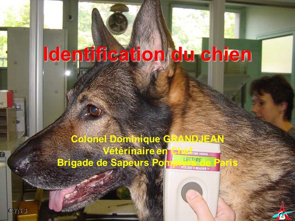 Identification du chien CYN 3 Colonel Dominique GRANDJEAN Vétérinaire en Chef Brigade de Sapeurs Pompiers de Paris
