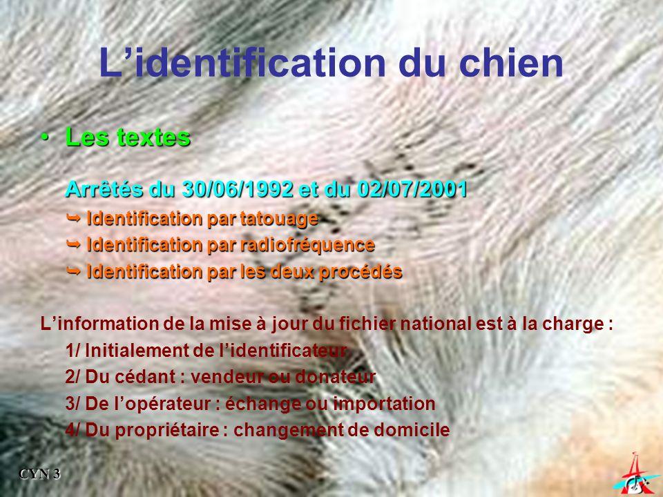 Le tatouage Obligation depuis le 1er janvier 1992 pour tous les chiens / chats cédés ou vendus Fichiers nationaux- canins [SCC 1971] - félins [SNVEL] 13 175 754 chiens enregistrés à fin 2001 92 560 chiens retrouvés en 2001 Rmq : Loi du janvier 1999 Identification (tatouage ou puce) obligatoire - départements infectés par la rage - pour se rendre en Corse ou DOM-TOM - chiens de 1er et 2ème catégories - centres de vacances, campings, pensions - expositions, concours CYN 3
