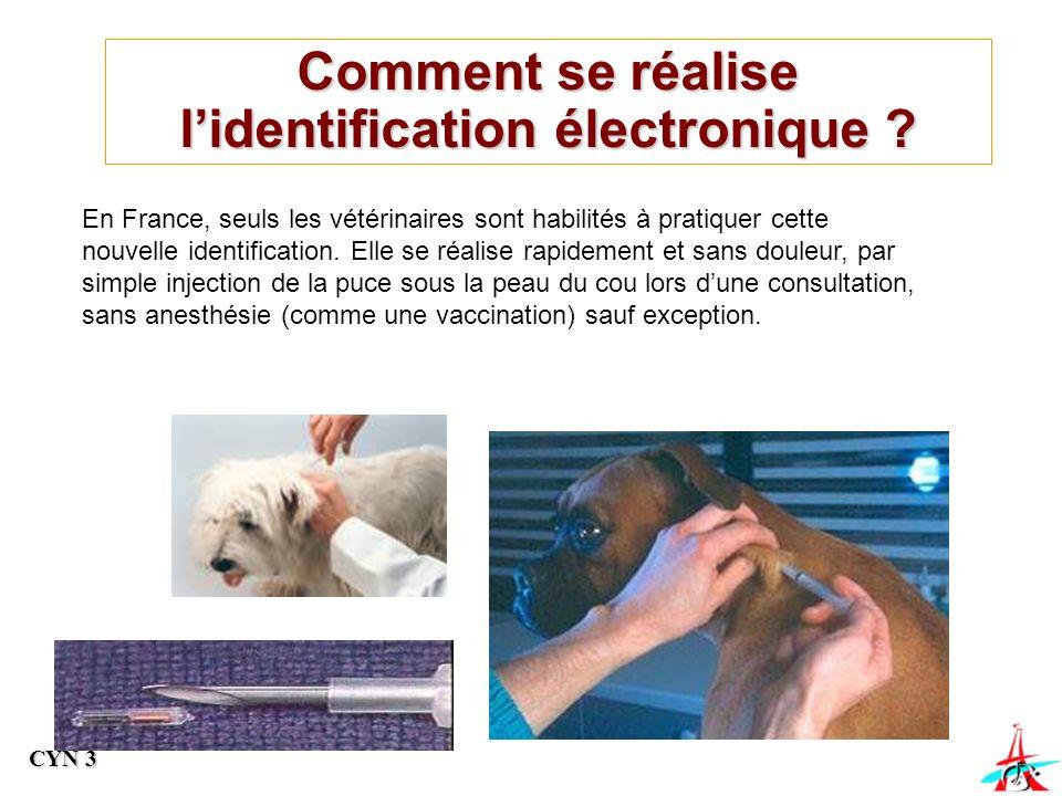 En France, seuls les vétérinaires sont habilités à pratiquer cette nouvelle identification.
