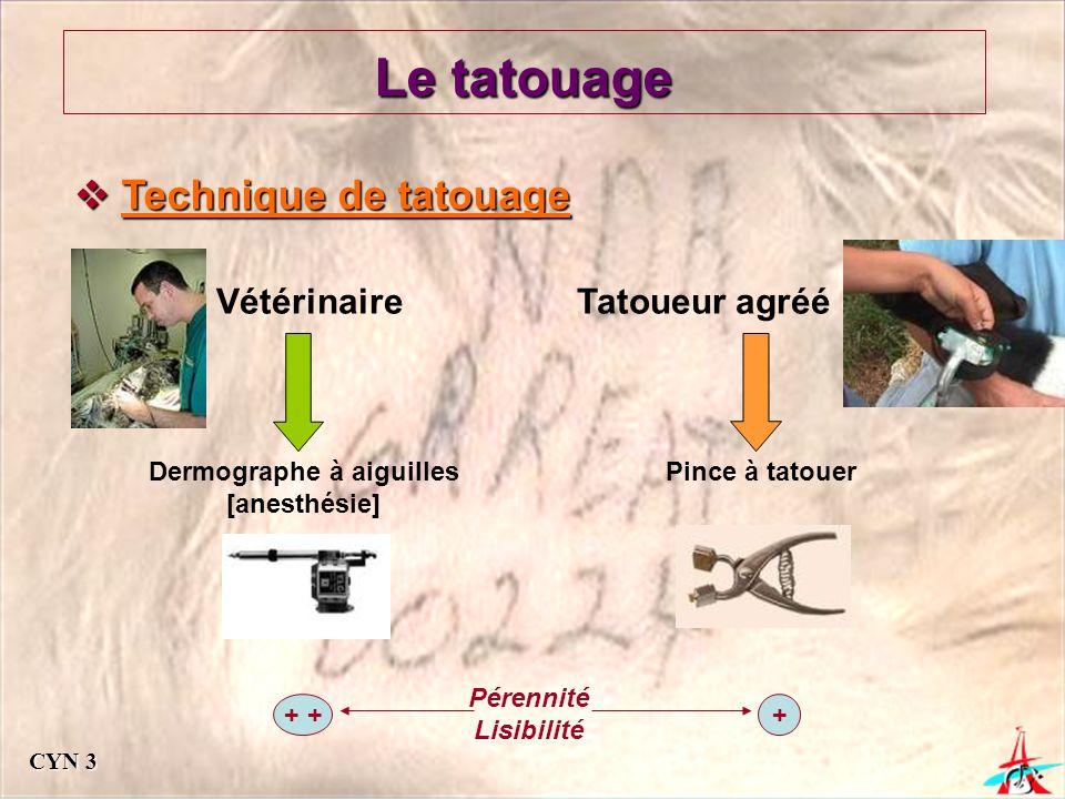 Le tatouage Technique de tatouage Technique de tatouage Vétérinaire Dermographe à aiguilles [anesthésie] Tatoueur agréé Pince à tatouer + + Pérennité Lisibilité CYN 3