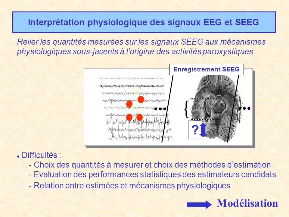 Interprétation physiologique des signaux EEG et SEEG Relier les quantités mesurées sur les signaux SEEG aux mécanismes physiologiques sous-jacents à l