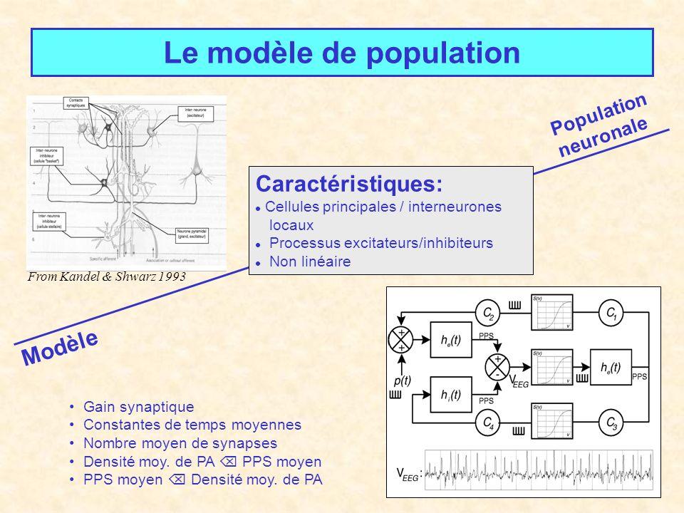 Le modèle de population Modèle From Kandel & Shwarz 1993 Population neuronale Caractéristiques: Cellules principales / interneurones locaux Processus excitateurs/inhibiteurs Non linéaire Gain synaptique Constantes de temps moyennes Nombre moyen de synapses Densité moy.