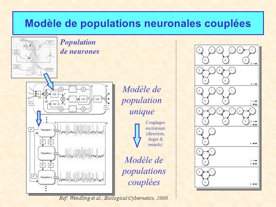 Modèle de populations neuronales couplées Modèle de population unique Modèle de populations couplées Couplages excitateurs (direction, degré & retards) Ref: Wendling et al., Biological Cybernetics, 2000 Population de neurones