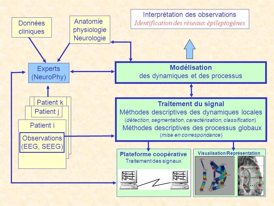 Interprétation des observations Identification des réseaux épileptogènes Experts (NeuroPhy) Anatomie physiologie Neurologie Patient kPatient j Patient