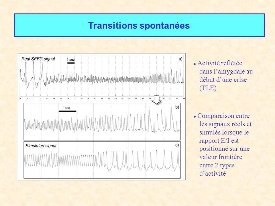 Transitions spontanées Activité reflétée dans lamygdale au début dune crise (TLE) Comparaison entre les signaux réels et simulés lorsque le rapport E/