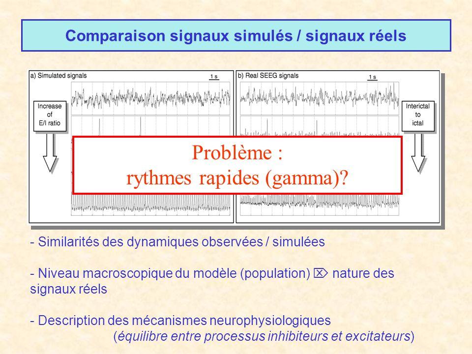 Comparaison signaux simulés / signaux réels - Similarités des dynamiques observées / simulées - Niveau macroscopique du modèle (population) nature des signaux réels - Description des mécanismes neurophysiologiques (équilibre entre processus inhibiteurs et excitateurs) Problème : rythmes rapides (gamma)?