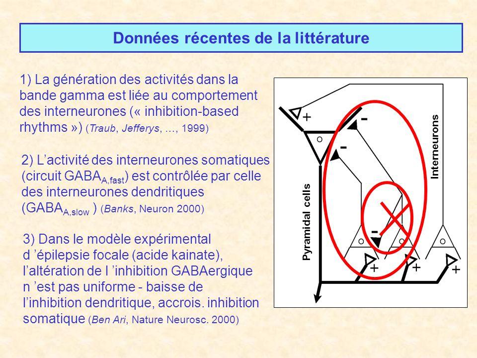 Pyramidal cells Interneurons Données récentes de la littérature 2) Lactivité des interneurones somatiques (circuit GABA A,fast ) est contrôlée par celle des interneurones dendritiques (GABA A,slow ) (Banks, Neuron 2000) 1) La génération des activités dans la bande gamma est liée au comportement des interneurones (« inhibition-based rhythms ») (Traub, Jefferys, …, 1999) 3) Dans le modèle expérimental d épilepsie focale (acide kainate), laltération de l inhibition GABAergique n est pas uniforme - baisse de linhibition dendritique, accrois.