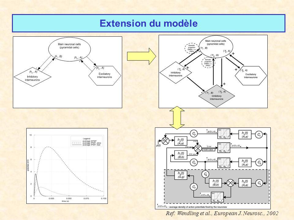 Extension du modèle Ref: Wendling et al., European J. Neurosc., 2002