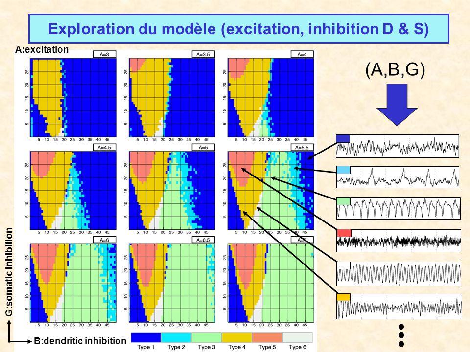 G:somatic inhibition B:dendritic inhibition A:excitation Exploration du modèle (excitation, inhibition D & S) (A,B,G)