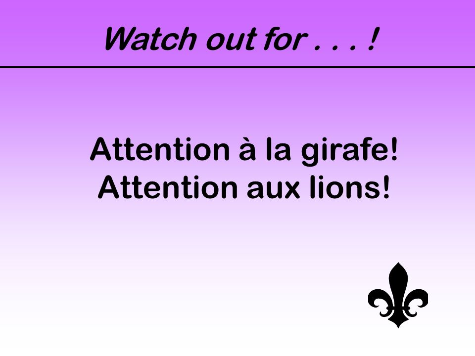 Look out! Faites attention! Fais attention! Faites gaffe! Fais gaffe!