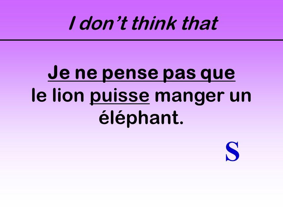 Im not certain that... Je ne suis pas certain(e) que le lion puisse manger un éléphant. S