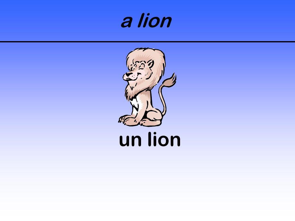 a hyena une hyène