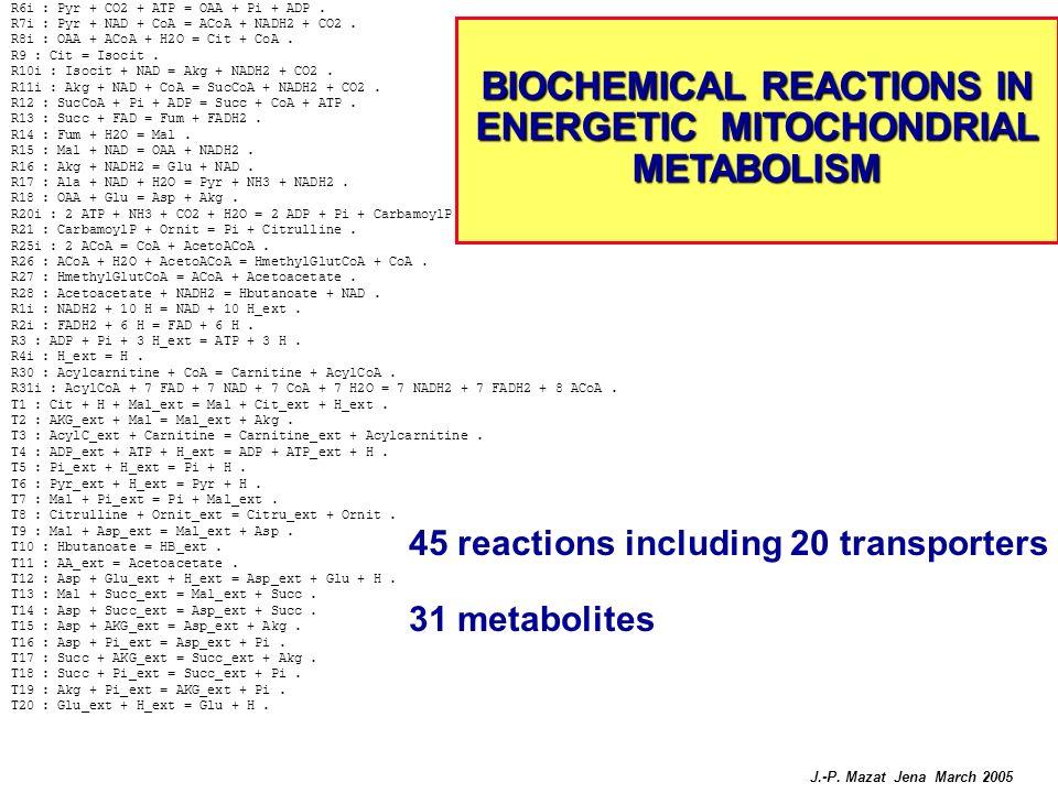 R6i : Pyr + CO2 + ATP = OAA + Pi + ADP. R7i : Pyr + NAD + CoA = ACoA + NADH2 + CO2. R8i : OAA + ACoA + H2O = Cit + CoA. R9 : Cit = Isocit. R10i : Isoc