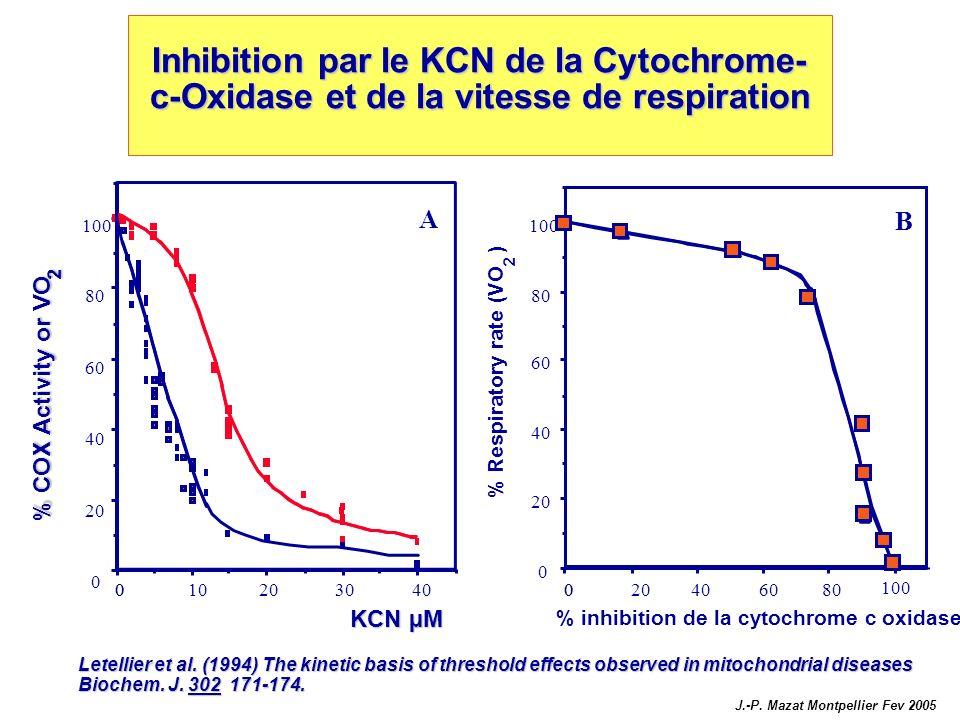 KCN µM 4030201000 Inhibition par le KCN de la Cytochrome- c-Oxidase et de la vitesse de respiration 0 20 40 60 80 100 A Letellier et al. (1994) The ki