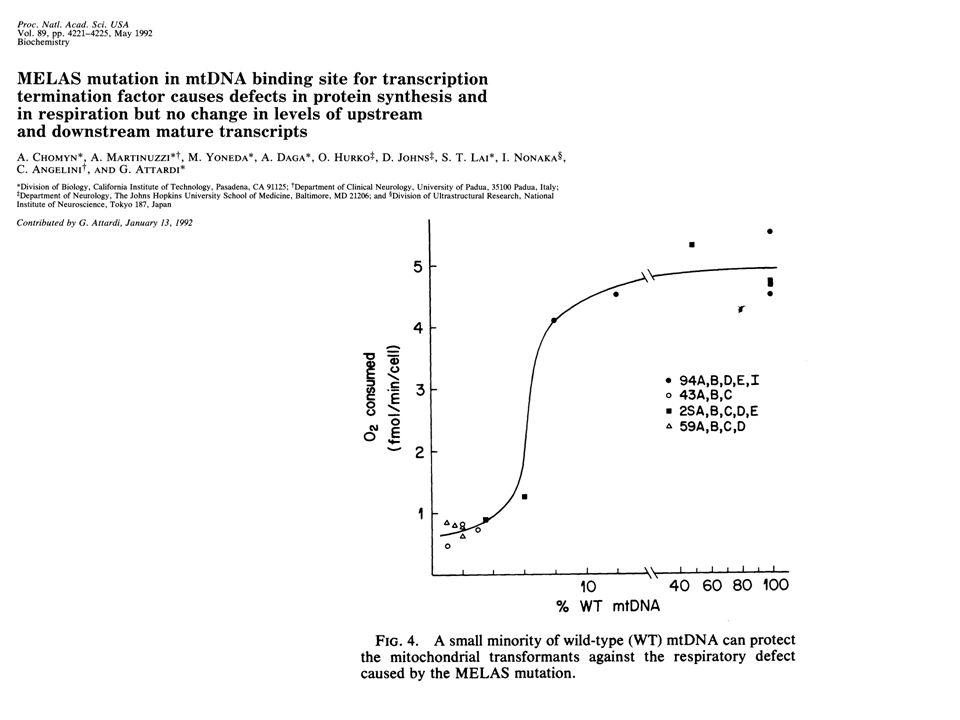 Activité COX (50 biopsies) 0 2 4 6 051015202530 Vitesse de respiration MISE EN ÉVIDENCE DUN SEUIL DANS LES PATHOLOGIES MITOCHONDRIALES J.-P.