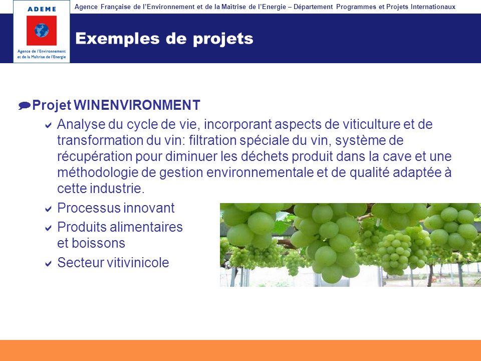 Agence Française de lEnvironnement et de la Maîtrise de lEnergie – Département Programmes et Projets Internationaux Fil dariane Exemples de projets Pr