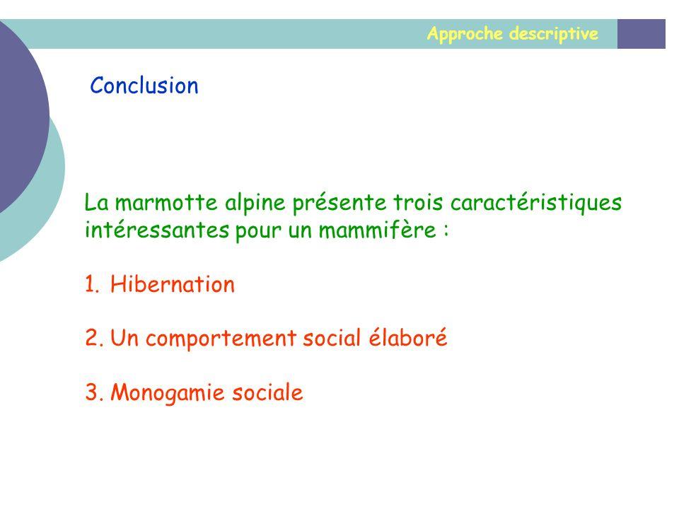 Approche descriptive Conclusion La marmotte alpine présente trois caractéristiques intéressantes pour un mammifère : 1.Hibernation 2.Un comportement s