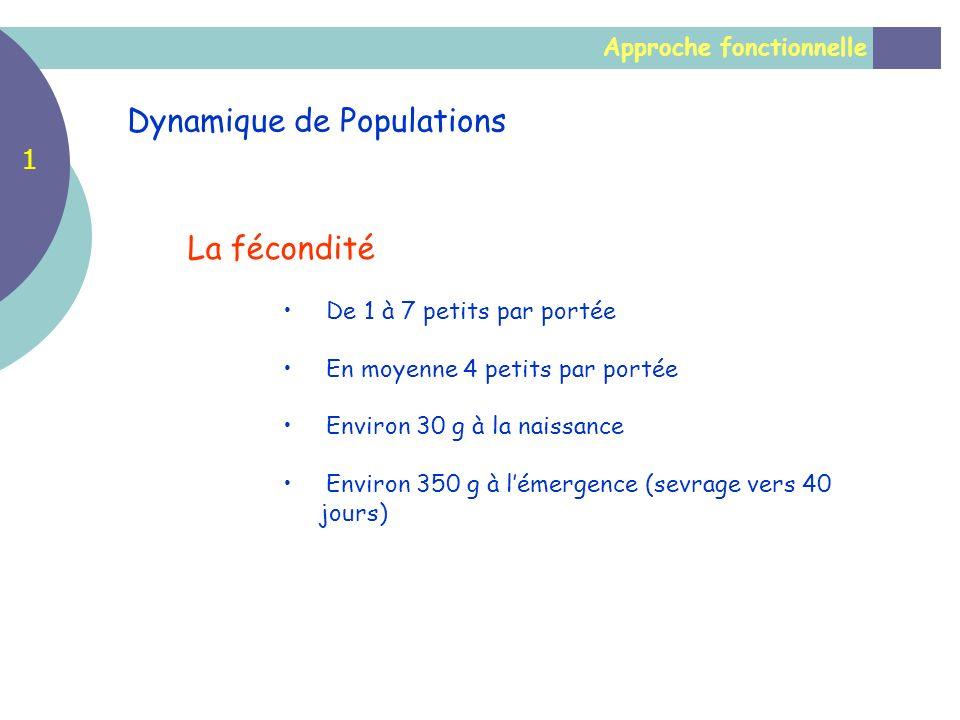 Approche fonctionnelle Dynamique de Populations La fécondité De 1 à 7 petits par portée En moyenne 4 petits par portée Environ 30 g à la naissance Env