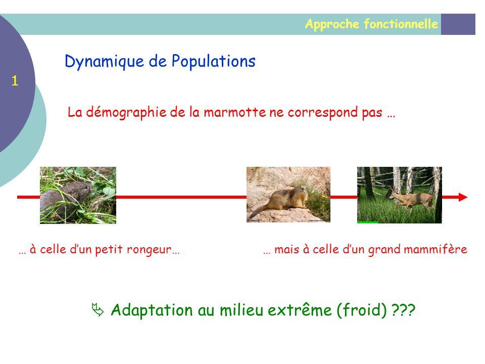 Approche fonctionnelle Dynamique de Populations 1 La démographie de la marmotte ne correspond pas … … à celle dun petit rongeur…… mais à celle dun gra