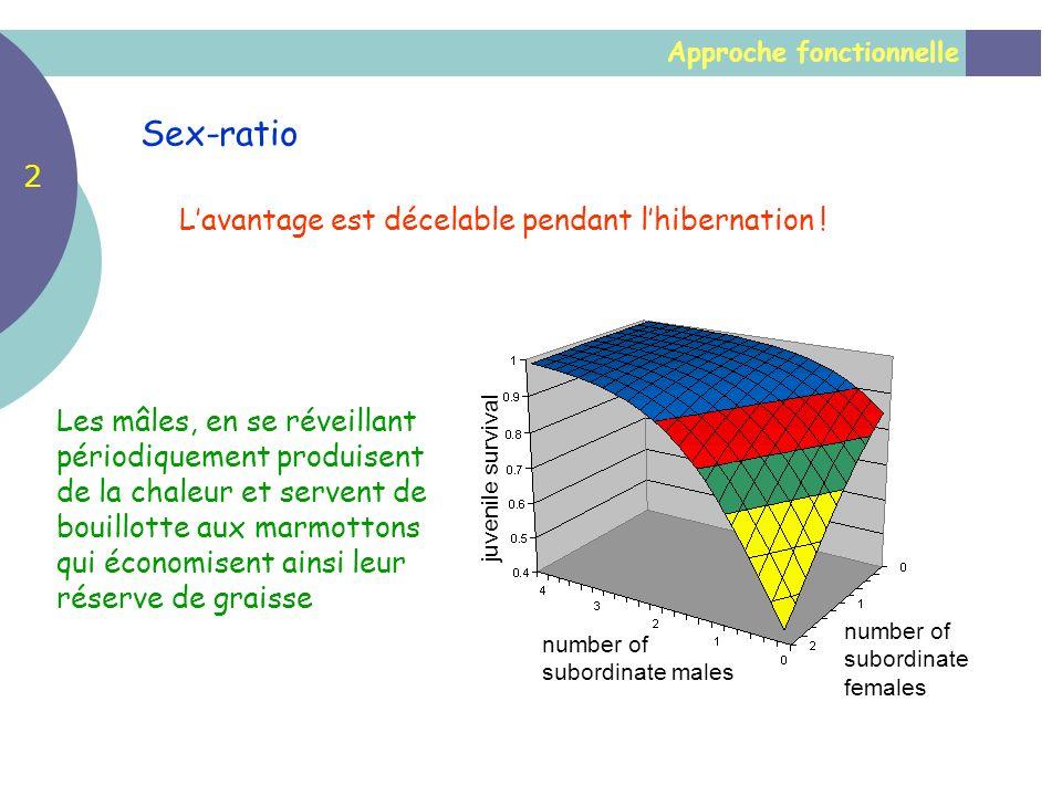 Approche fonctionnelle Sex-ratio number of subordinate males number of subordinate females juvenile survival Lavantage est décelable pendant lhibernat