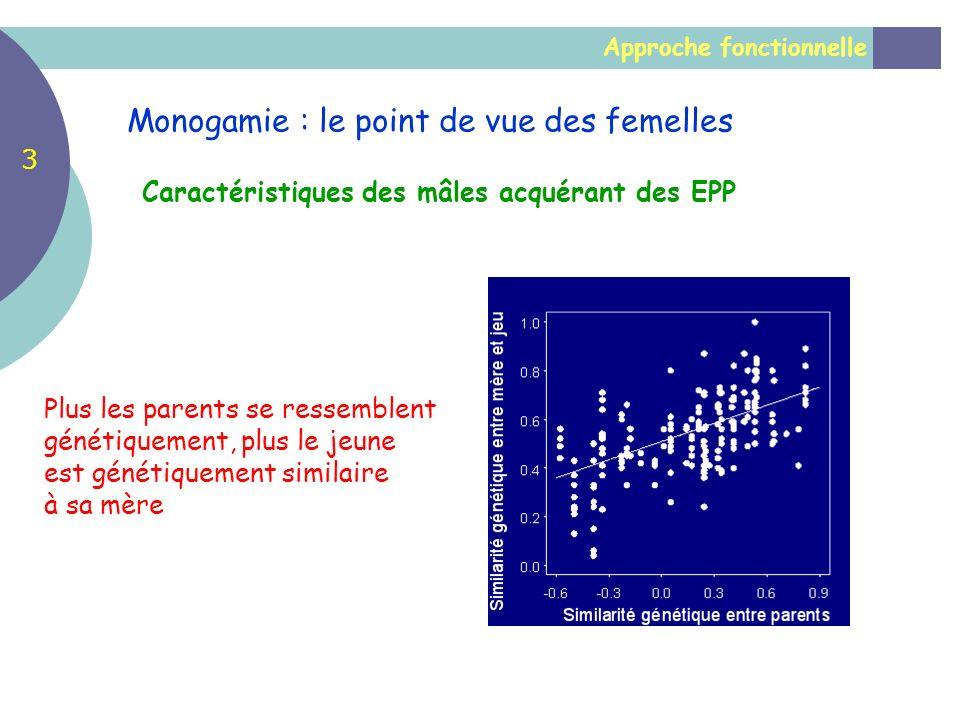 Approche fonctionnelle Caractéristiques des mâles acquérant des EPP Monogamie : le point de vue des femelles 3 Plus les parents se ressemblent génétiq