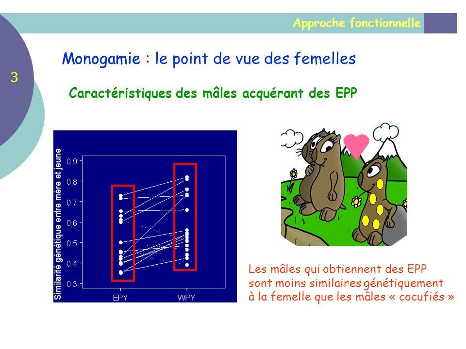 Approche fonctionnelle Monogamie Caractéristiques des mâles acquérant des EPP Les mâles qui obtiennent des EPP sont moins similaires génétiquement à l