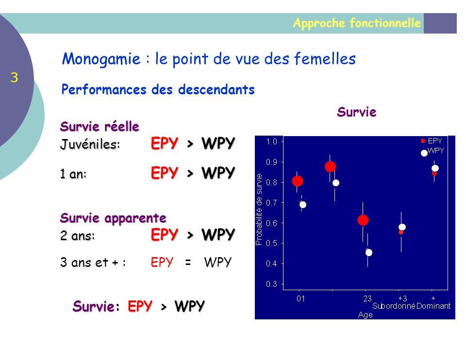 Approche fonctionnelle Monogamie Performances des descendants Survie Survie réelle Juvéniles: EPY > WPY 1 an: EPY > WPY Survie apparente 2 ans: EPY >