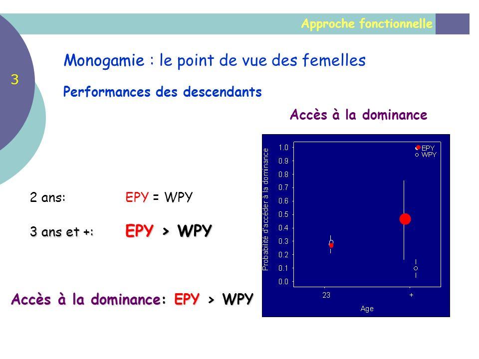 Approche fonctionnelle Monogamie Performances des descendants Accès à la dominance 2 ans: EPY = WPY 3 ans et +: EPY > WPY Accès à la dominance: EPY >