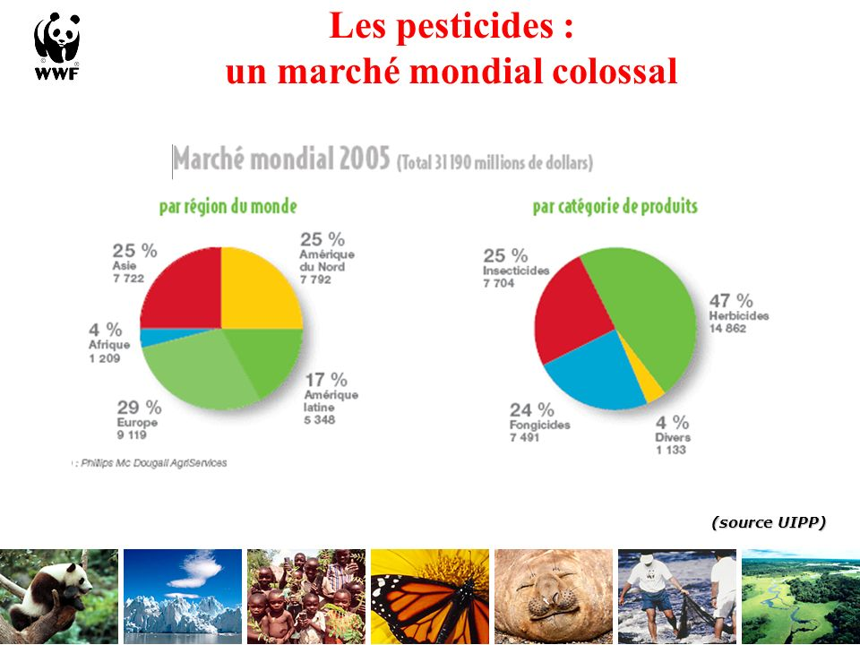 Utilisation des pesticides en Europe et en France Commission Européenne 2005 La France est aujourdhui : 3ème consommateur mondial de pesticides : 76 000 tonnes en 2004 1er utilisateur européen avec 34% volume total de EU 15 90% du volume utilisé par secteur agricole Volume de substance active appliquée : France = 5,4Kg/ha (derrière Portugal, Pays Bas et Belgique) (données 2001) Un marché de 1,867 Mds deuros (2005) (Source UIPP)