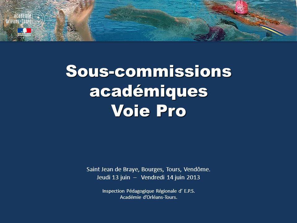 Sous-commissions académiques Voie Pro Saint Jean de Braye, Bourges, Tours, Vendôme. Jeudi 13 juin – Vendredi 14 juin 2013 Inspection Pédagogique Régio