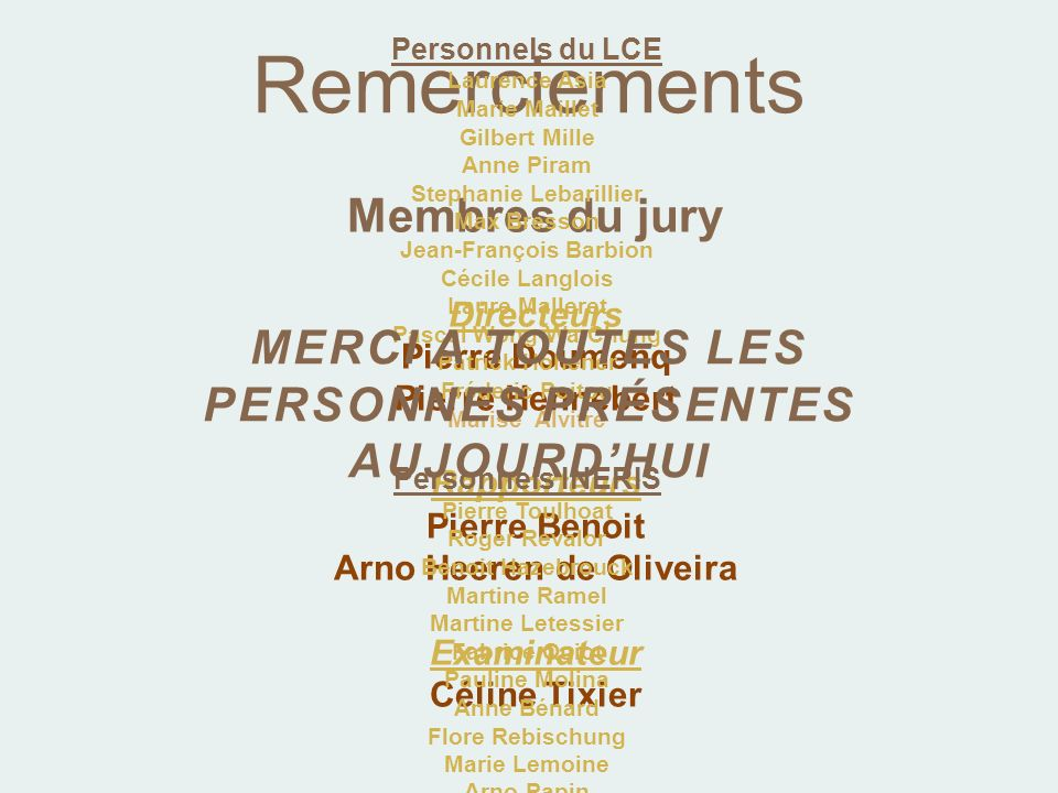 Membres du jury Directeurs Pierre Doumenq Pierre Hennebert Rapporteurs Pierre Benoit Arno Heeren de Oliveira Examinateur Céline Tixier Remerciements P