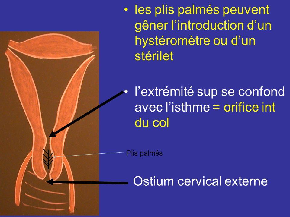 Configuration interne 2 Canal cervical : cavité réelle, fusiformes, remplie par la glaire cervicale. Ses parois ant et post sont marquées par des repl