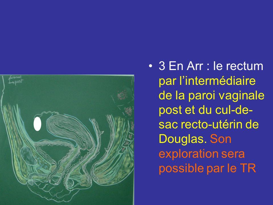Rapport de la partie vaginale 2 Latéralement : le paracervix dans lequel cheminent : –lart vaginale –les br vésico vaginale dorigine utérine. –Limport