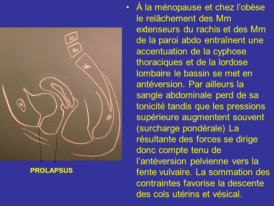 II) Cinétique utérine La statique utérine est dautant meilleure que lorientation physio de lappareil génital est conservée ou accentuée et que les élt