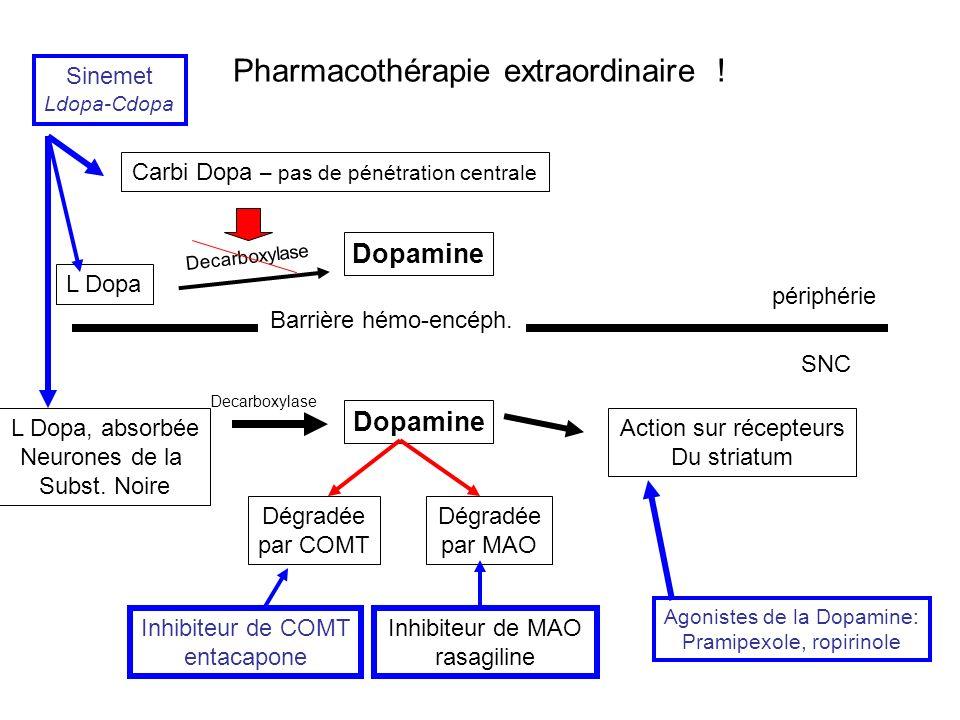 Pharmacothérapie extraordinaire ! L Dopa Barrière hémo-encéph. périphérie SNC Carbi Dopa – pas de pénétration centrale Dopamine Decarboxylase L Dopa,