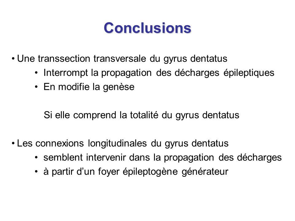 Conclusions Une transsection transversale du gyrus dentatus Interrompt la propagation des décharges épileptiques En modifie la genèse Si elle comprend la totalité du gyrus dentatus Les connexions longitudinales du gyrus dentatus semblent intervenir dans la propagation des décharges à partir dun foyer épileptogène générateur