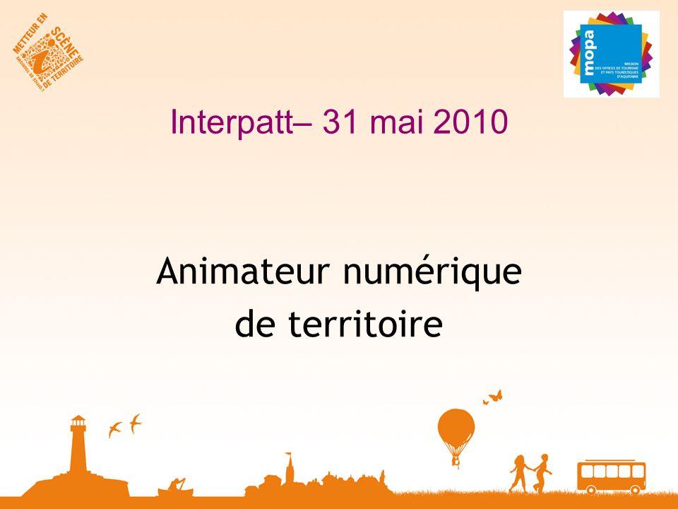 Interpatt– 31 mai 2010 Animateur numérique de territoire
