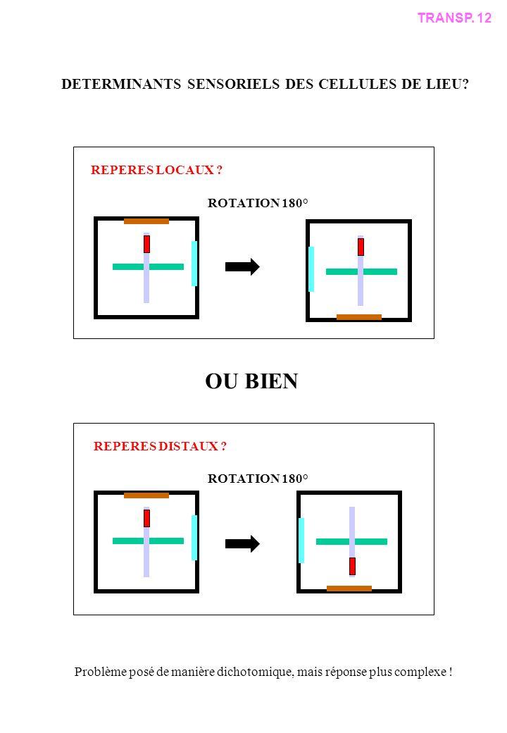 OU BIEN ROTATION 180° TRANSP.12 DETERMINANTS SENSORIELS DES CELLULES DE LIEU.