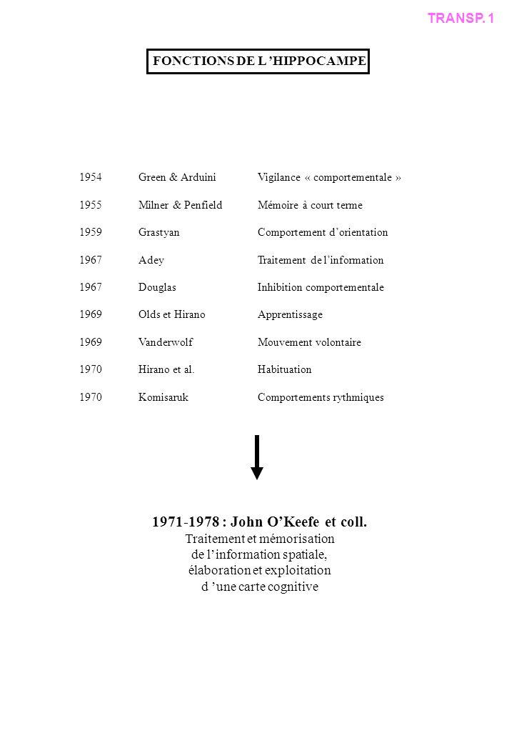 FONCTIONS DE L HIPPOCAMPE 1954Green & ArduiniVigilance « comportementale » 1955Milner & PenfieldMémoire à court terme 1959GrastyanComportement dorientation 1967AdeyTraitement de linformation 1967DouglasInhibition comportementale 1969Olds et HiranoApprentissage 1969VanderwolfMouvement volontaire 1970Hirano et al.Habituation 1970KomisarukComportements rythmiques 1971-1978 : John OKeefe et coll.