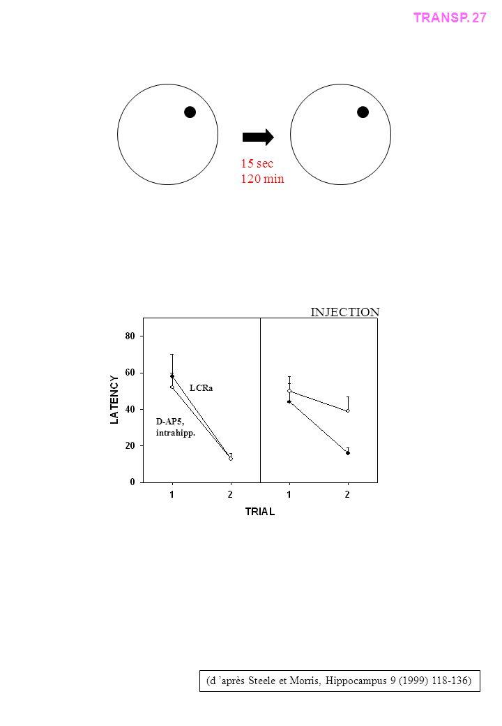 (d après Steele et Morris, Hippocampus 9 (1999) 118-136) 15 sec 120 min D-AP5, intrahipp.