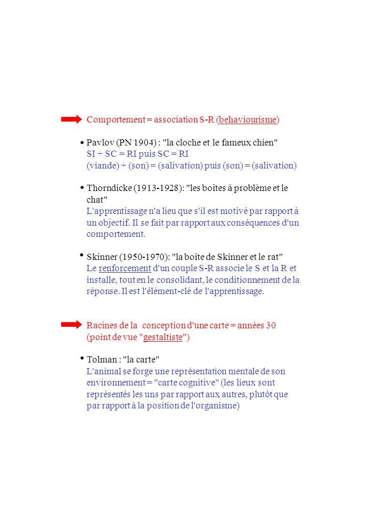 Comportement = association S-R (behaviourisme) Pavlov (PN 1904) : la cloche et le fameux chien SI + SC = RI puis SC = RI (viande) + (son) = (salivation) puis (son) = (salivation) Thorndicke (1913-1928): les boîtes à problème et le chat L apprentissage n a lieu que s il est motivé par rapport à un objectif.