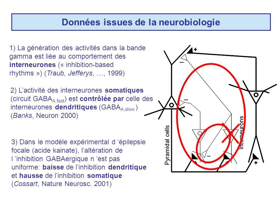 Données issues de la neurobiologie 2) Lactivité des interneurones somatiques (circuit GABA A,fast ) est contrôlée par celle des interneurones dendritiques (GABA A,slow ) (Banks, Neuron 2000) 1) La génération des activités dans la bande gamma est liée au comportement des interneurones (« inhibition-based rhythms ») (Traub, Jefferys, …, 1999) 3) Dans le modèle expérimental d épilepsie focale (acide kainate), laltération de l inhibition GABAergique n est pas uniforme: baisse de linhibition dendritique et hausse de linhibition somatique (Cossart, Nature Neurosc.