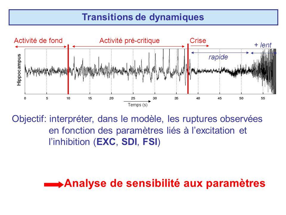 Transitions de dynamiques Hippocampus CriseActivité de fondActivité pré-critique rapide + lent Objectif: interpréter, dans le modèle, les ruptures observées en fonction des paramètres liés à lexcitation et linhibition (EXC, SDI, FSI) Analyse de sensibilité aux paramètres Temps (s)