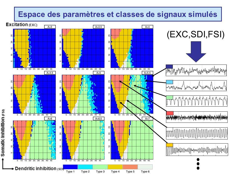 Somatic inhibition (FSI) Dendritic inhibition (SDI) Excitation (EXC) Espace des paramètres et classes de signaux simulés (EXC,SDI,FSI)