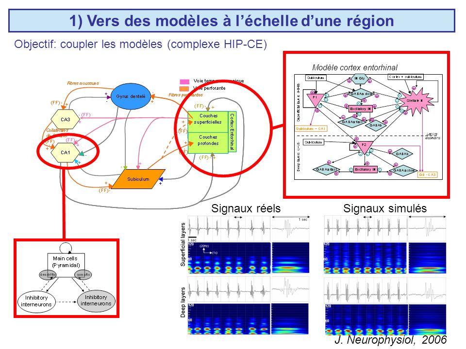 1) Vers des modèles à léchelle dune région Modèle cortex entorhinal Objectif: coupler les modèles (complexe HIP-CE) J.