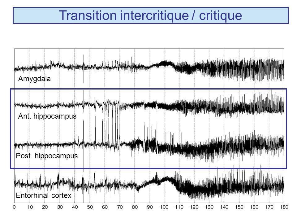 Population neuronale Réseaux neuronaux (~ 10 4 Cell.) Activité de champ (~SEEG) Activités intracellulaires 1 sec 50 msec .