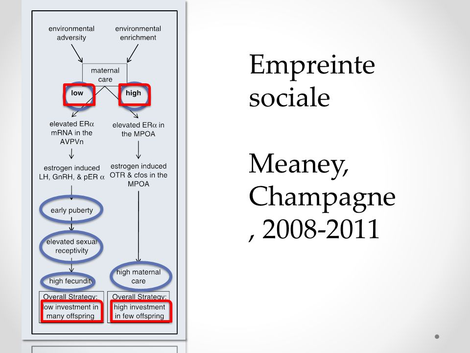 Empreinte sociale Meaney, Champagne, 2008-2011