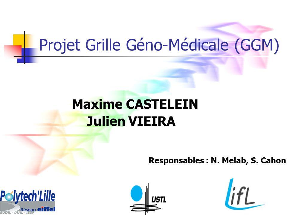 Projet Grille Géno-Médicale (GGM) Maxime CASTELEIN Julien VIEIRA Responsables : N. Melab, S. Cahon